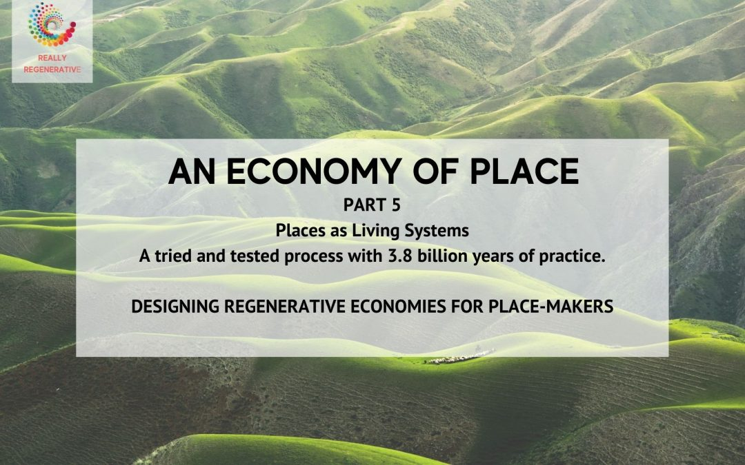 An Economy of Place – Part 5